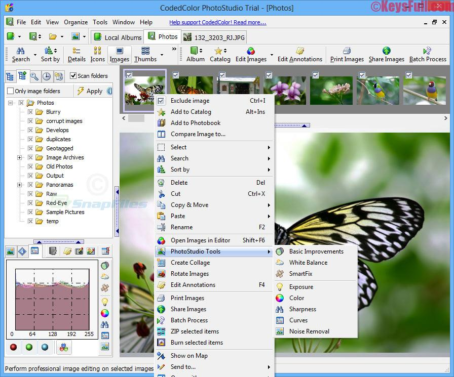 CodedColor PhotoStudio Pro 7.5.2 Registration Key Plus Crack (2)