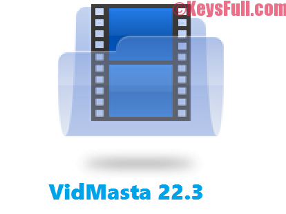 VidMasta 22.3 Activation Code Free Download (2)