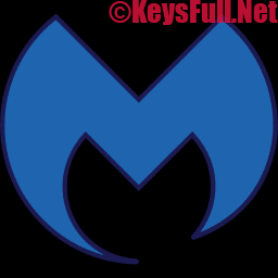 Malwarebytes Premium 4.1.2 Crack + Serial Key 2020