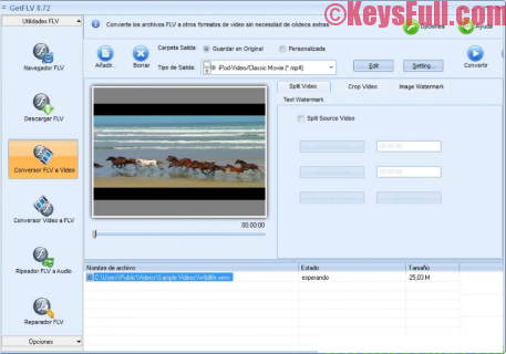 getflv-9-9-full-crack-serial-key-free-download-3