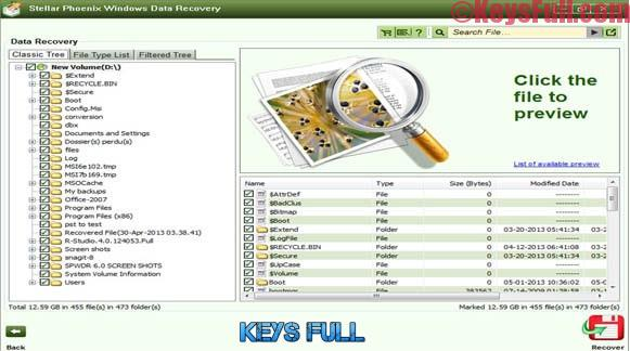 Stellar Phoenix Windows Data Recovery Pro 7.0.0.2 Full Keygen