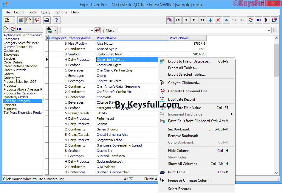 Exportizer Pro 6.1.9 Full Crack + Serial Key